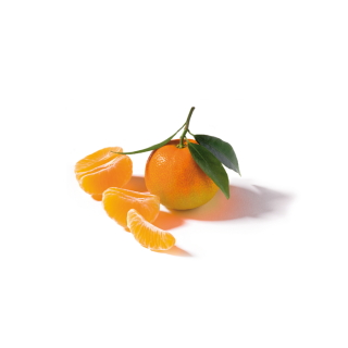 Organic Clementine - Clementine from Sicily