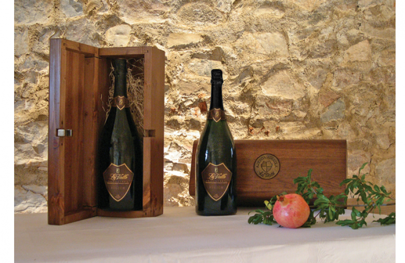 Heir and ambassador of the ancient heritage of a superb wine territory, Franciacorta has production roots that reach back to the 16th century. Thanks to the dedicated passion of yesterday's and today's growers, the sensory characteristics of Franciacorta wines are well known and loved all over the world.
