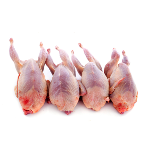 Fresh Free range Quails