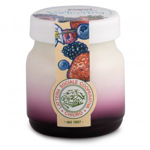 Latteria di Chiuro - Berry Yogurt