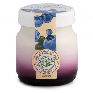 Latteria di Chiuro - Blueberry Yogurt