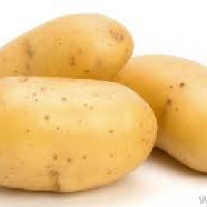 Sicilian High Quality Potatoes