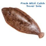 Fresh Wild Catch Dover Sole