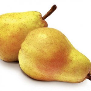 Williams Pear
