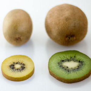 Top Quality Duo Kiwi Golden and Green 120-140gr each