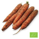 Organic Val Pusteria Unwhased Carrots
