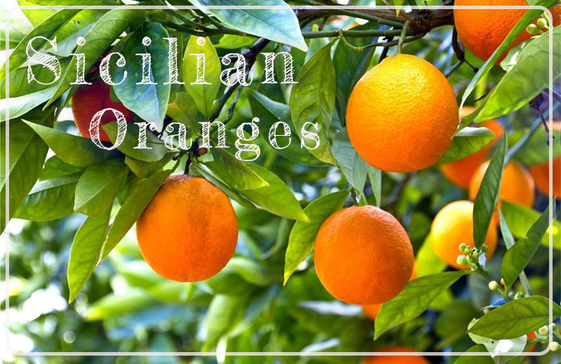 Sicilian Oranges fresh delivered in Hong Kong by Buonissimo Ltd